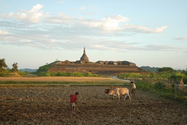 Temple of Mrauk U