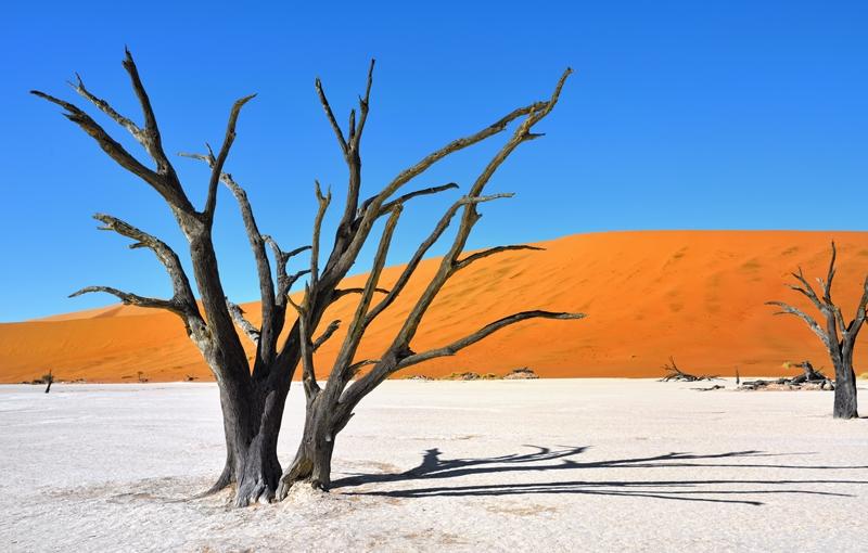 Sfeerimpressie Rondreis Namibië - Dwars door woestijn en zoutvlaktes