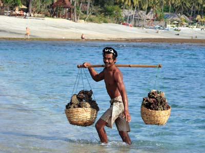Shoestring: Groepsreis Indonesië: Java & Bali; De 'Gordel van Smaragd'