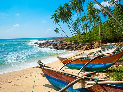 Shoestring: ReisKnaller: Sri Lanka 14 dagen; Regenwoud, strand en theeplantages