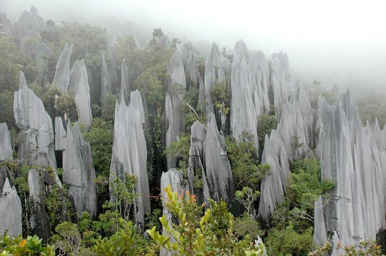 Headhunters Trail - Reisebaustein Malaysia