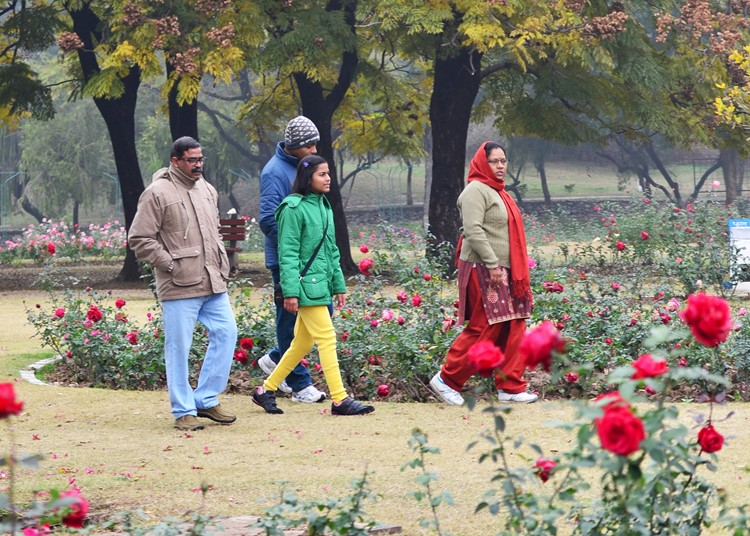 Zakir Hussain Rose Garden in Chandigarh, India