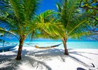 Malediven_-_shutterstock_68757997_-_Murat_Subatli.jpg