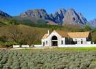 Wijnboerderij rondom Stellenbosch