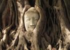 Ayutthaya_-_Tempels_-_PvE_84_.JPG
