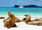 6._Galapagos_-_Pure.JPG