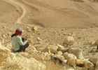 Mt Nebo - Jordanië reis