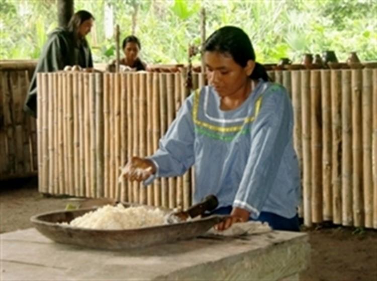 Reisebaustein Ecuador - Amazonas Tena