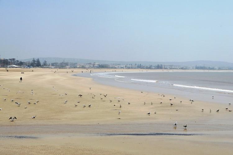 Het brede strand van Essaouira - Marokko