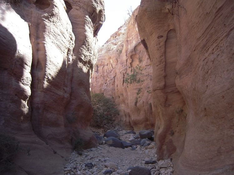 Natuurreservaat - Dana