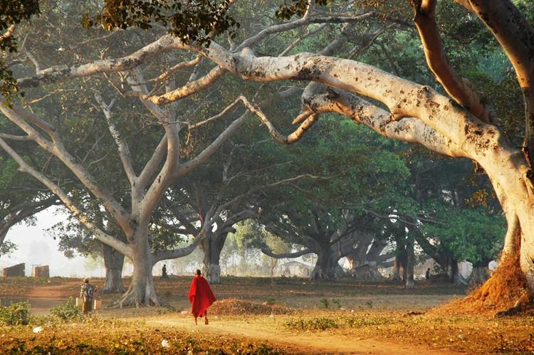 Pindaya - Reisebaustein Myanmar