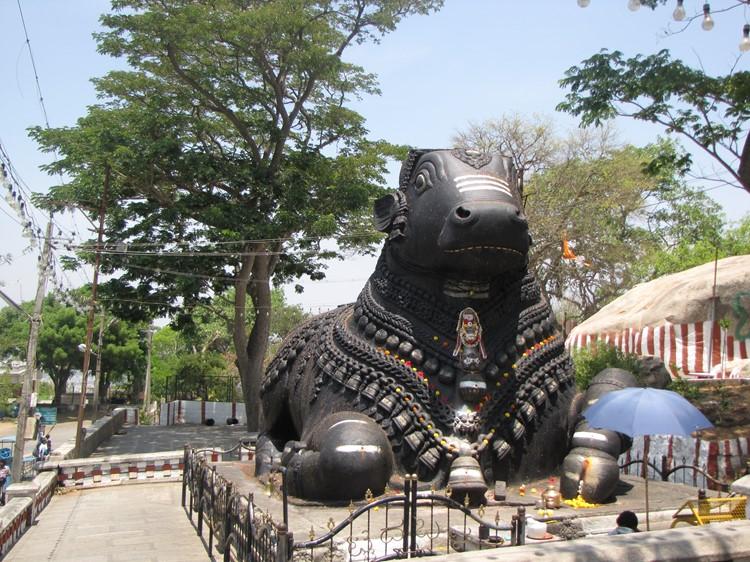 Mysore - Reisebaustein