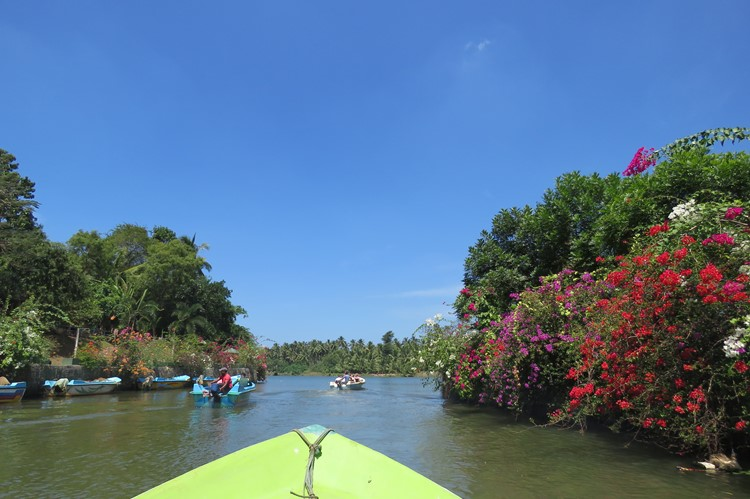 Negombo Dutch Canals