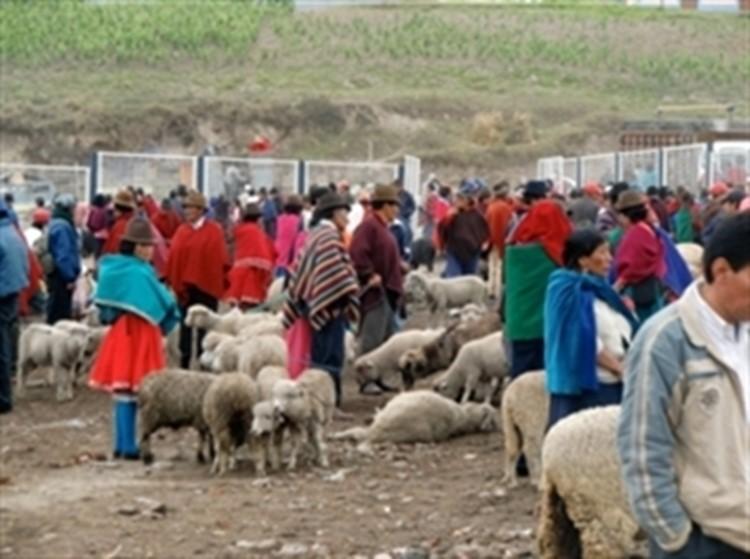 Reisebaustein Ecuador - Guamote