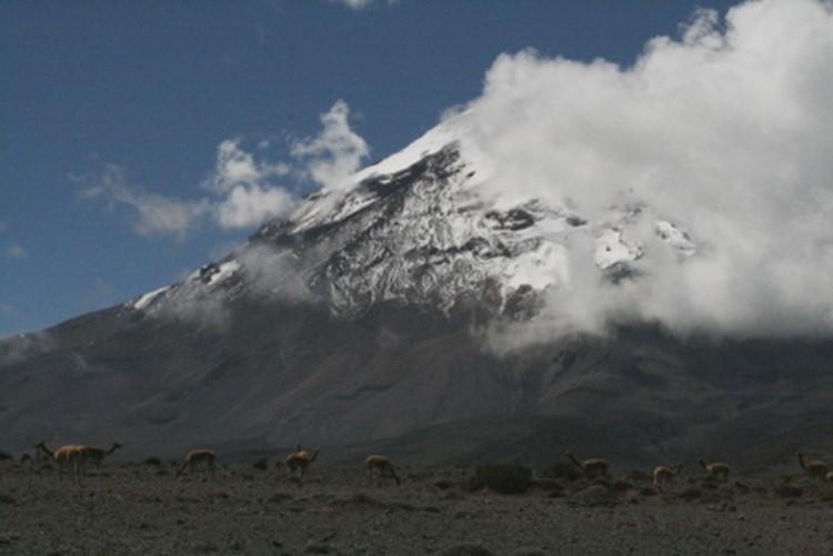 Rundreise Ecuador - Chimborazo