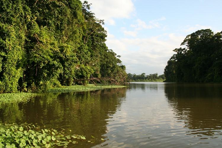 Varen door de kanalen van Tortuguero