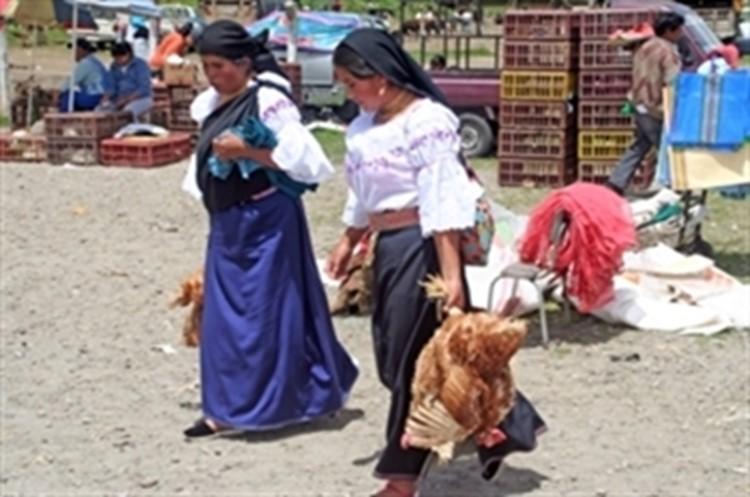 Reisebaustein Ecuador - Runa Tupari