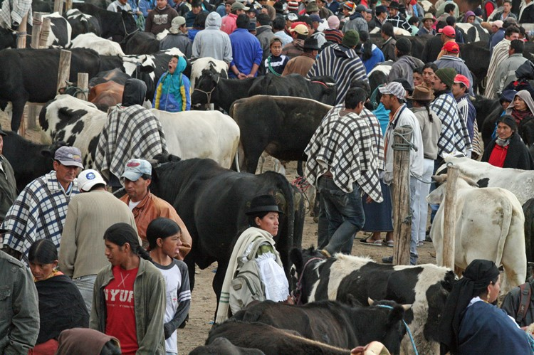 De markt van Otavalo - Ecuador