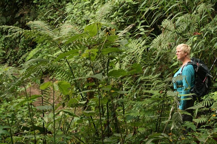 In de nevelwouden van Bellavista – Ecuador