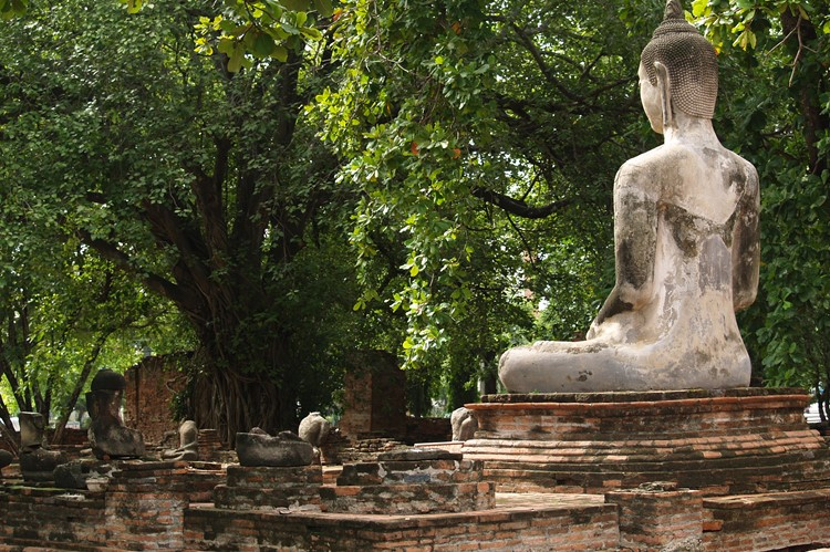 Een Boeddhabeeld in Ayuthaya