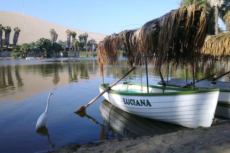 De oase van Huacachina bij Ica - Zuid Peru