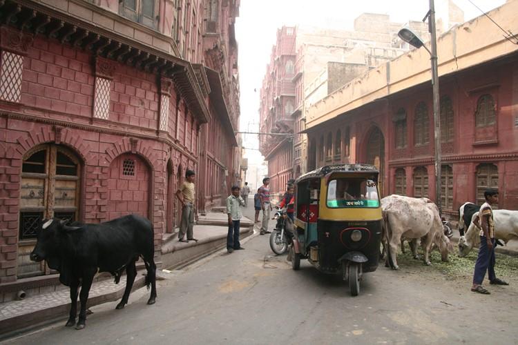 Bikaner - Reisebaustein Indien