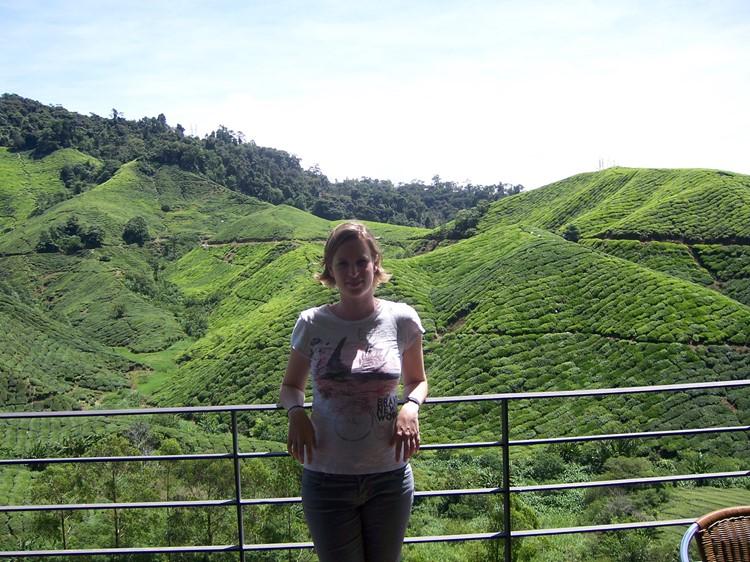 Cameron Highlands - Reisebaustein Malaysia