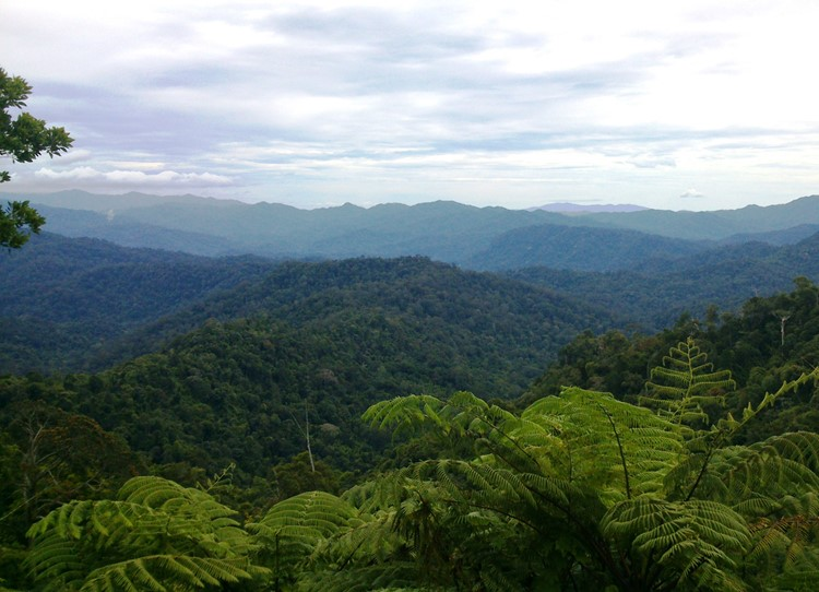 Belum - Reisebaustein Malaysia