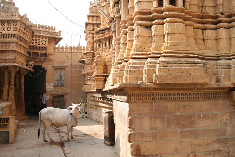 Jaisalmer - reis India