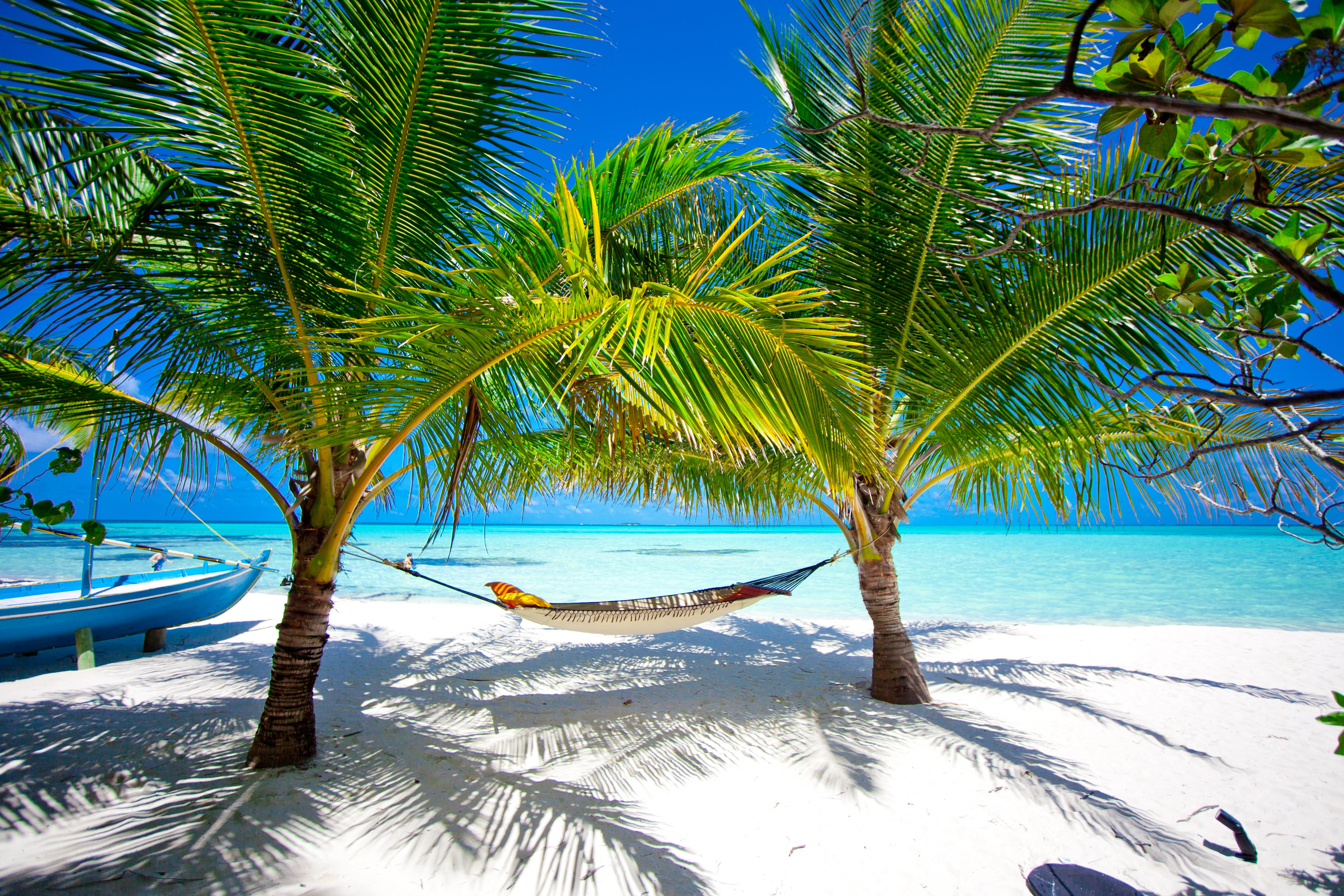 Malediven: welkom in het bounty paradijs Ellaidhoo vissen in