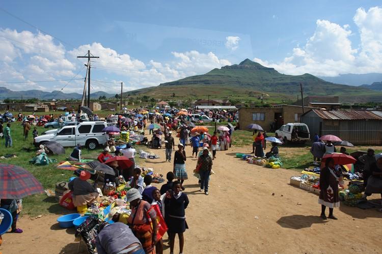 Omgeving van Drakensberg - reis Zuid-Afrika