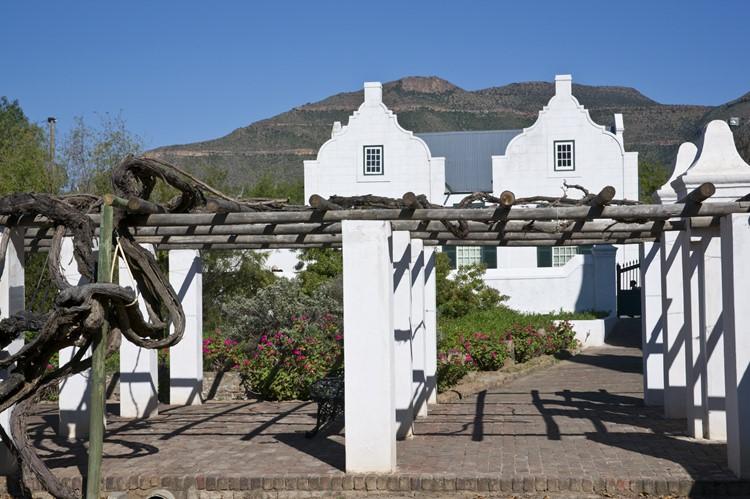Wijngaarden in de omgeving van Graaff Reinet, Zuid-Afrika