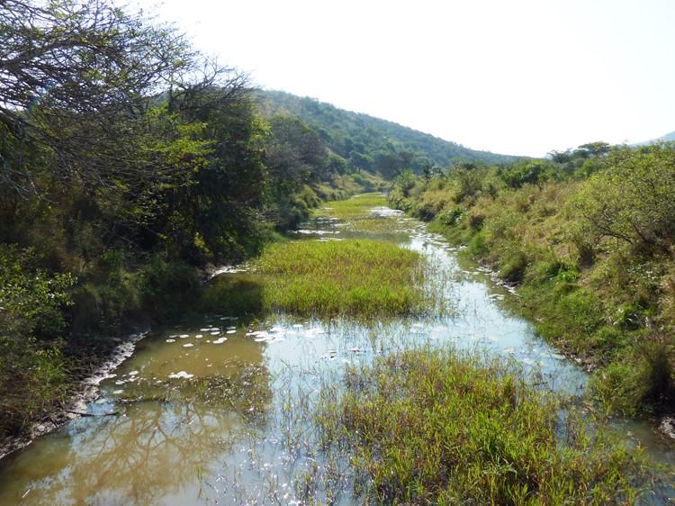 Hluhluwe Reservat - Reisebaustein Südafrika