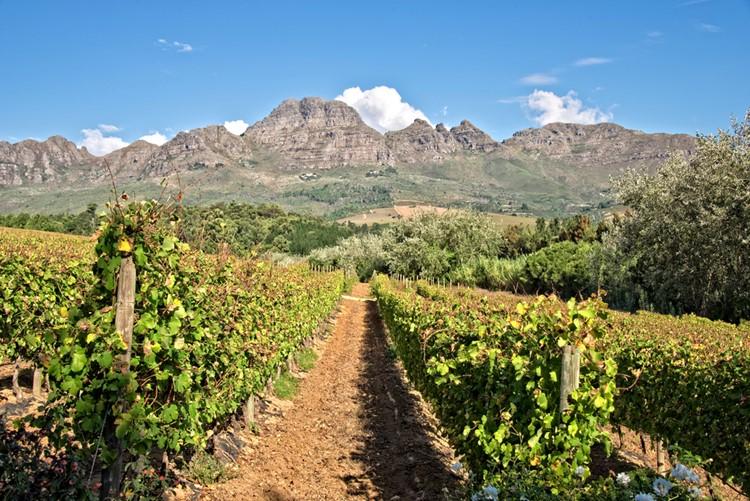 Stellenbosch - Reisebaustein Südafrika