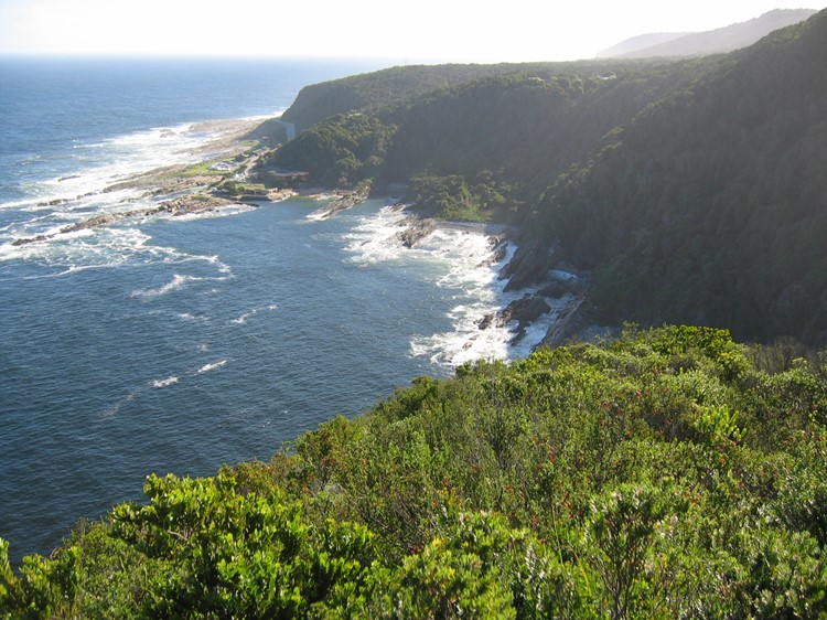 Tsitsikamma National Park - Reisebaustein Südafrika