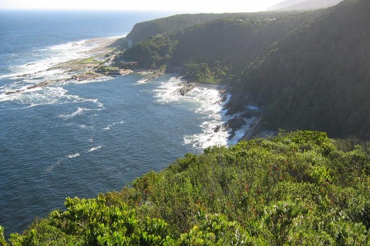 Tsitsikamma Nationaal Park - reis Zuid-Afrika