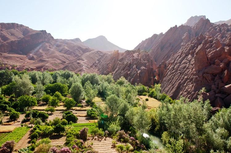 Reisebaustein Marokko - Dadesschlucht