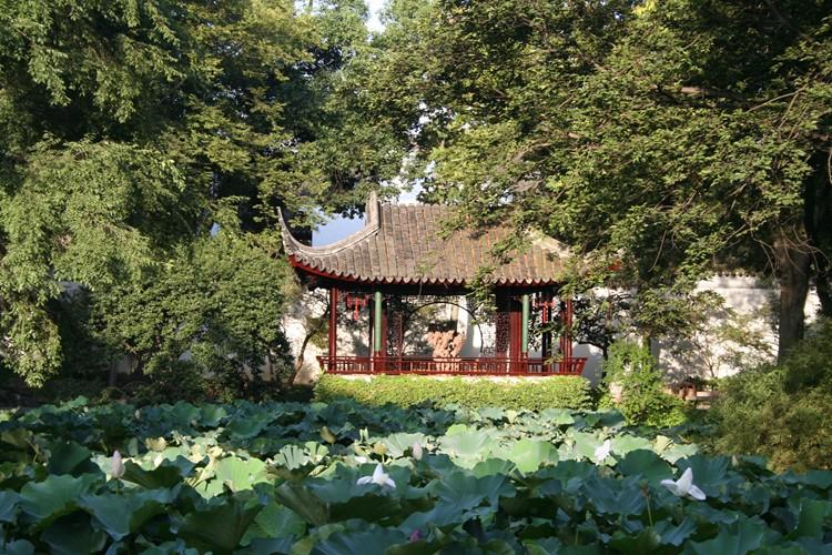 Een lotusvijver in Suzhou