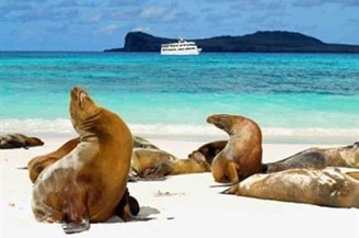 Reisebaustein Ecuador - Galapgos