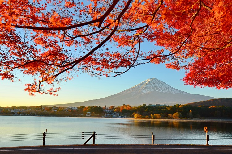 Mount Fuji - Honshu - Japan