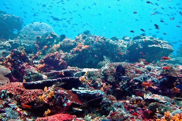 Nusa Lembongan - Bali - Indonesië